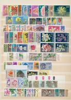 Thematik: Flora, Botanik / Flora, Botany, Bloom: 1960's/1980's, Flowers/Plants/Fruits, Comprehensive - Sonstige