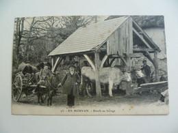 CPA / Carte Postale Ancienne / Nièvre (58) En Morvan - Boeufs Au Ferrage - Autres Communes