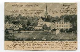 AK Gruß Aus Horw - Panorama (1073) - LU Lucerne