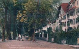 Bienne BE, Promenade Du Pasquart (229) - BE Berne