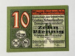 Allemagne Notgeld Triebes 10 Pfennig - Collezioni