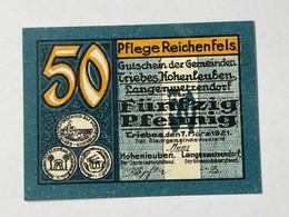 Allemagne Notgeld Triebes 50 Pfennig - Collezioni