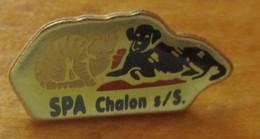 A048 -- Pin's SPA Chalon -- Exclusif Sur Delcampe - Animales