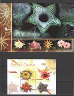 TT952 GAMBIA PLANTS FLOWERS THE ORCHID CACTUS 2KB MNH - Cactus
