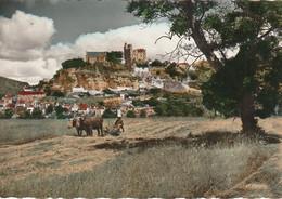 BE17 -(24) LA  DORDOGNE PITTORESQUE - BEYNAC - VUE GENERALE -  PAYSAN AUX  CHAMPS  AVEC ATTELAGE DE BOEUFS  -  2  SCANS - Autres Communes