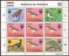 EC153 1985 PARAGUAY FAUNA BIRDS AUDUBON MICHEL 29 EURO 1KB MNH - Altri