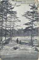 Thorenc - Sports D'hiver - Les Bords De La Lane  - (P) - Unclassified
