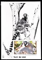 ANTIGUA (1994) Ring-tailed Lemur. Sierra Club Logo. Photographic Proof Of S/S. Scott No 1779. - Antigua And Barbuda (1981-...)