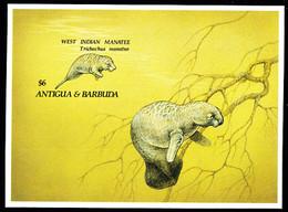 ANTIGUA (1993) West Indian Manatee. Imperforate S/S. Scott No 1662. - Antigua And Barbuda (1981-...)