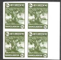 BANGLADESH (1976) Jackfruit Tree. Imperforate Margin Block Of 4. Unlisted Variety! Scott No 95, Yvert No 64. Rare! - Bangladesch
