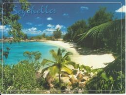 CPM Afrique Les Seychelles Petite Anse Kerlan Praslin Photo Turcotte Grand Format - Seychelles