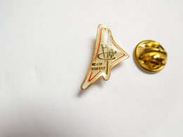 Beau Pin's Pins , Marine Nationale , DCN Ruelle Sur Touvre , Naval Group , Charente - Boats