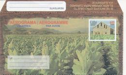 Cuba Aerogramme – Cigar Tobacco Field – Festival La Habana 2002 - Tabak