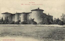 Le Tarn GAILLAC  Chateau De Mauriac Labouche RV - Gaillac
