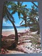 SEYCHELLES, ANSE GAULETTE MAHE - Seychelles