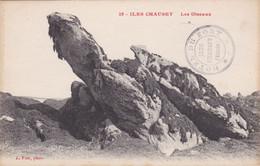 Iles Chausey - Les Oiseaux - Unclassified