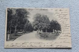 Cpa 1902, Wassy, Une Allée Des Promenades, Haute Marne 52 - Wassy