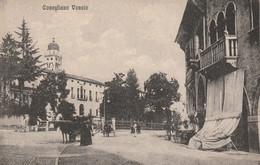 Veneto - Treviso - Conegliano Veneto - - Treviso