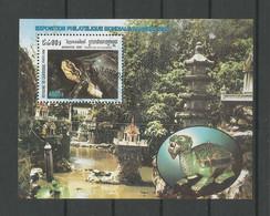 Cambodja 2000 Turtles S/S  Y.T. BF 162 (0) - Cambodia