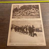 1916 EI Les Chiens De Guerre Chiens Ambulanciers Chenil Près De Reims Skieurs Autrichiens - Sin Clasificación