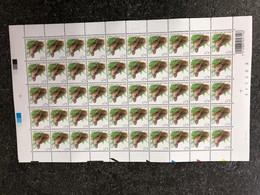 Belgie 3898 Buzin Volledig Vel FULL SHEET Birds MNH PLAATNUMMER 1 20/2/2009 - Full Sheets