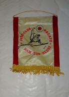 FANION JUDO - CLUB NAGATO, HAM SUR HEURE, JUDOKA, JUDOKAS, PROVINCE DE HAINAUT, BELGIQUE - Martial Arts
