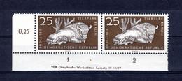DDR  Michel # 555 **  DV  (Druckvermerk) - Nuevos