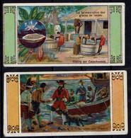 Cromo - Thienpont-Van Schooten - Cacao - Altri