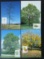 Carte Maximum Card (x4) Arbres Trees Bienfaisance Luxembourg 1997 - Cartes Maximum
