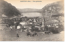 A/219             01      Nantua        Vue Générale - Nantua