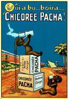 Chicorée Pacha, Qui A Bu Boira - éditions Authentiques Et Imaginaires - Neuve - Advertising