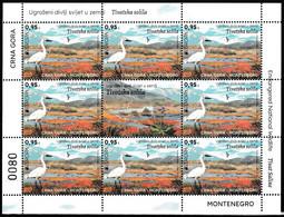 Europa Cept - 2021 - Montenegro - 8.Sets & 1.Label - (Wildlife) ** MNH - 2020