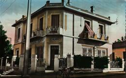 ALMA (ALGER)   Les P.T.T. - Algiers