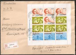 PAÍSES BAJOS. 1966-1970. LOTE CARTAS BLOCK. Nº , 5,6,7,8,9,10,11,12. - Storia Postale