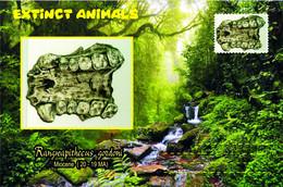 Vignettes De Fantaisie, Extinct Animals: Hominoidea, Rangwapithecus Gordoni - Fantasy Labels