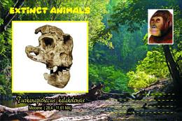 Vignettes De Fantaisie, Extinct Animals: Hominoidea, Turkanapithecus Kalakolensis - Fantasy Labels