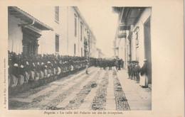 Bogota - La Calle Del Palacio Un Dia De Recepcion - Colombie