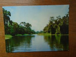 Nigeria , Lagos State  , Itoikin River - Nigeria