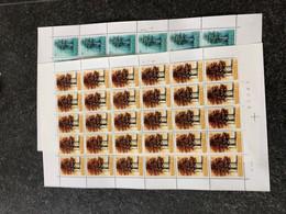 Belgie 1970 1526/27 TREES EUROPA CEPT Volledig Vel FULL SHEET MNH PLAATNUMMER 23 - Full Sheets