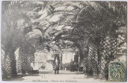 STE MAXIME - Place Des Palmiers - Sainte-Maxime