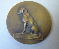 Méd. 26. Médaille En Bronze De V. Peter. Chien Assis. Offert Par A. Laurent Maire De Lille - Professionals / Firms