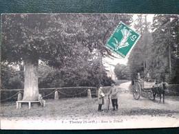 78 , Thoiry ,sous Le Tilleul.....circulée  Timbrée - Thoiry