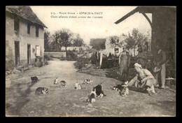 GUERRE 14/18 - ASPACH-LE-HAUT (HAUT-RHIN) - CHATS AFFAMES RODANT AUTOUR DES CUISINES - Guerra 1914-18