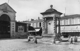Ile D'Oléron (17) - Le Château - Fontaine Renaissance - Ile D'Oléron