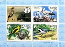 Weissrussland / Belarus / Biélorussie /BIAŁORUŚ 2002 MI.459-61**,MA.473-75 ,YVERT(Bl.29) Fauna. Bird Of The Year MNH * - Belarus
