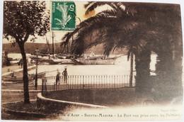 SAINTE MAXIME - Le Port Vue Prise Entre Les Palmiers - Sainte-Maxime