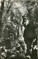 74 .n° 23768 . Annecy . Les Gorges Du Fier. Les Beaux Hetres . Cpsm . - Annecy