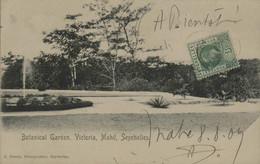 Botanical Garden, Victoria, Mahé, Seychelles - Seychelles