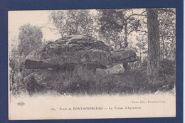 CPA Tortue Turtle écrite Fontainebleau - Turtles