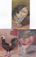 482039Kippen En Hanen Van Alfred Schönian (1856-1916)(5 Kaarten.) - Autres Illustrateurs